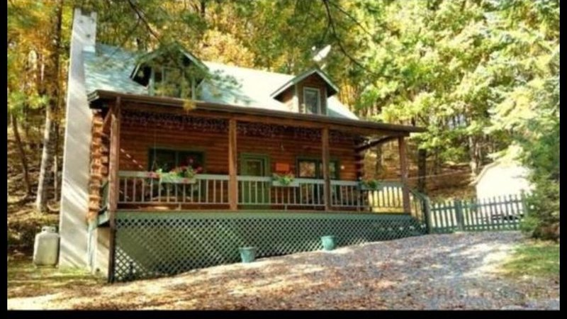 Cozy Log Cabin With Hot Tub - Pet Friendly, holiday rental in Beech Mountain