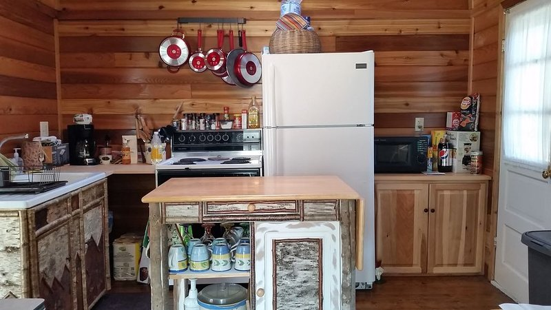 Renovated Rustic Cottage, holiday rental in Northville