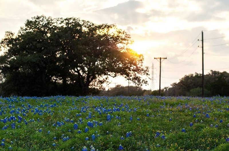 Not only close to all things San Antonio but also the beautiful Hill Country.