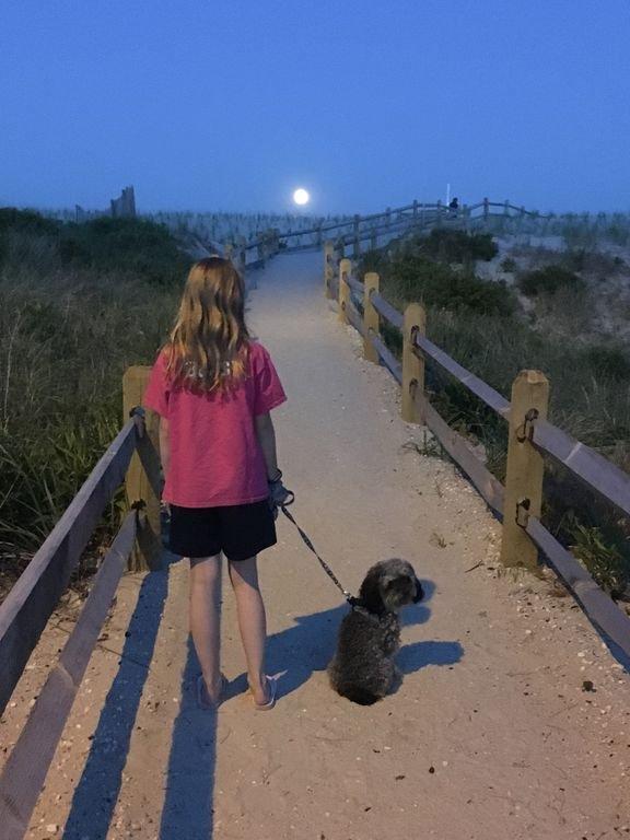 Notre fille et notre chiot profitant d'une promenade estivale au clair de lune.