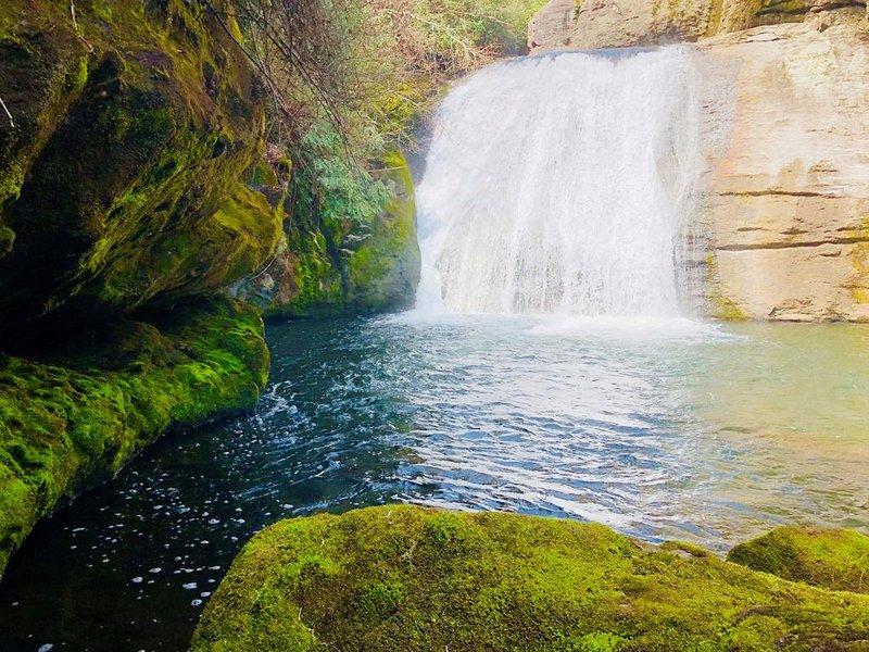 Unicorn! Riverfront Sauna & Cabana, Private Waterfalls, Trails, & fly fishing!, location de vacances à Cashiers