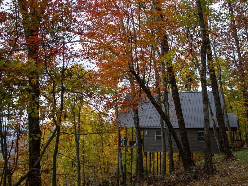 Red Rock Vista- Luxuriously Cozy Treetop Cabin with Stellar Views!, holiday rental in Parthenon