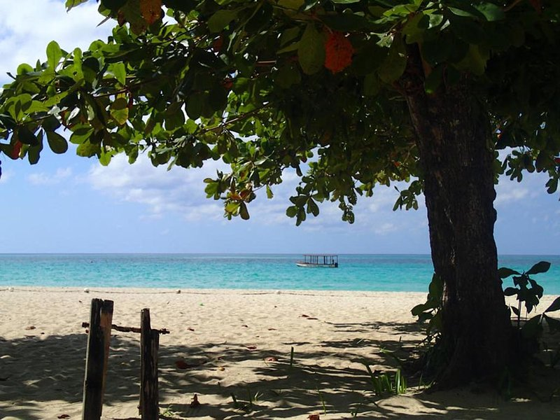 A breath of rest and relaxation on one of the top beaches in the world!, holiday rental in Westmoreland Parish