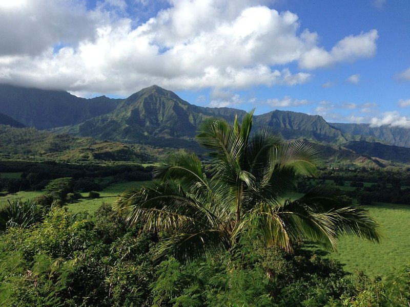 Alii Kai I, Mountain View Condo on Spectacular Ocean Cliff, vacation rental in Princeville