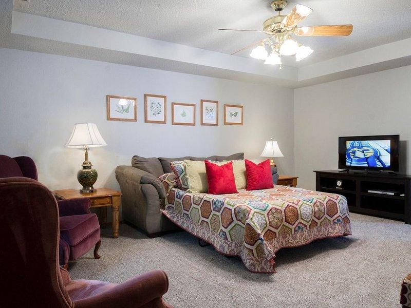 Main floor living room 1 with full size sleeper sofa