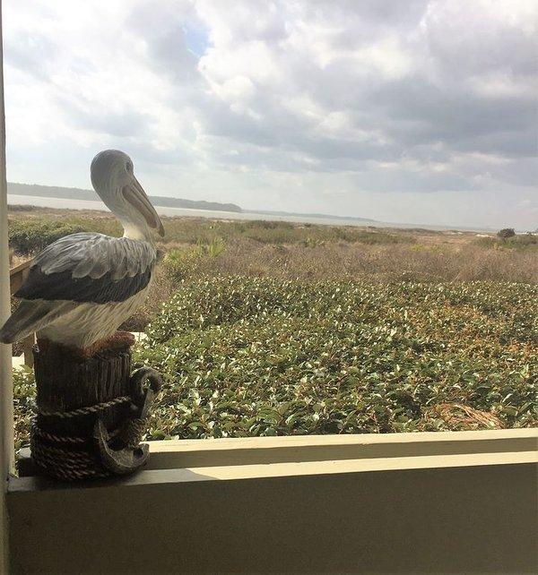 Bienvenue à Pelican Crossing à Pelican Watch sur Seabrook Island!