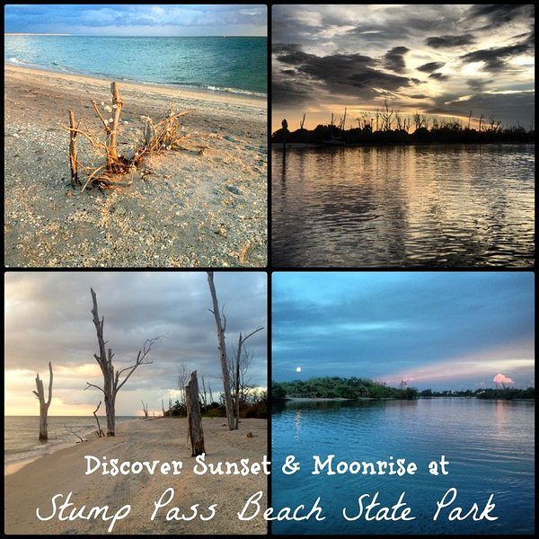 Stump Pass State Park.  Enjoy the trails, beach and beautiful water