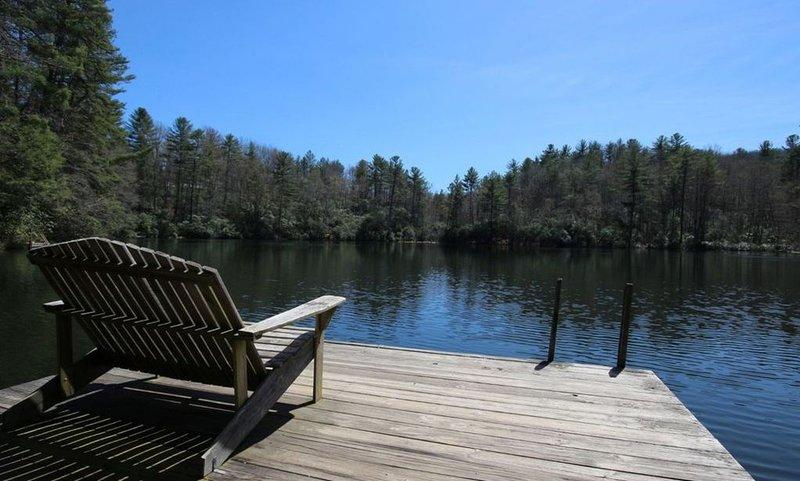Moondance - Hike / Bike / Golf / Relax w/ Hot Tub - Brevard / DuPont / Caesars H, holiday rental in Brevard