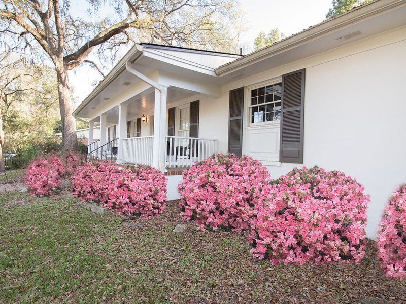LUXURY MIDTOWN 4 bed (2 Master suites), bonus room, 3 bath, Sleeps 12+, alquiler de vacaciones en Tallahassee