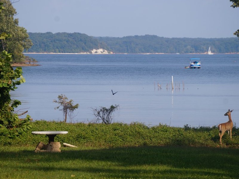 KY Lake *WATERFRONT* --2nd house available -- kayaks, holiday rental in Calvert City