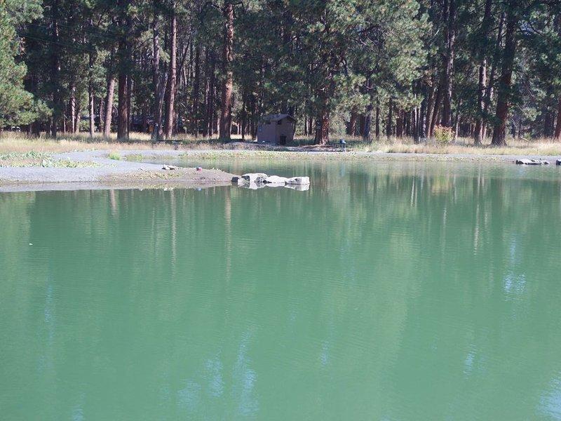 Bassin de pêche pour enfants Metolius