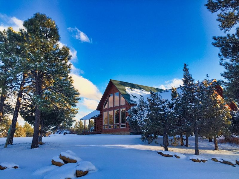 Timber Lodge:  Family Log Hm w/ Amazing Views, 3 Acres Near Town, A/C, Hot Tub, alquiler de vacaciones en Pagosa Springs