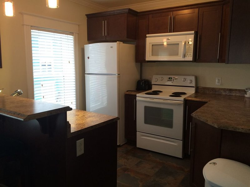 Suite 2, Executive 1 Bedroom Apartment on Colourful Jellybean Row, holiday rental in Pouch Cove