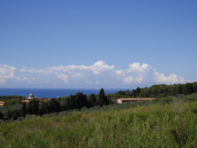 In un antico podere immerso nella campagna Toscana appartamento su due piani, vacation rental in Castiglioncello