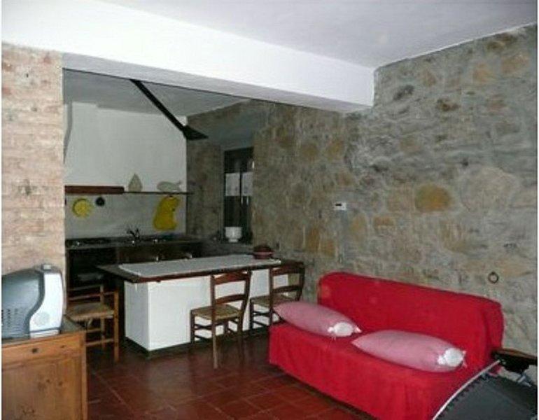 Salon avec canapé-lit double et cuisine