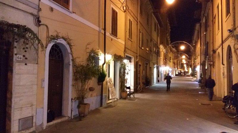 Appartamento Mimosa - Centro storico di Pietrasanta, holiday rental in Pietrasanta