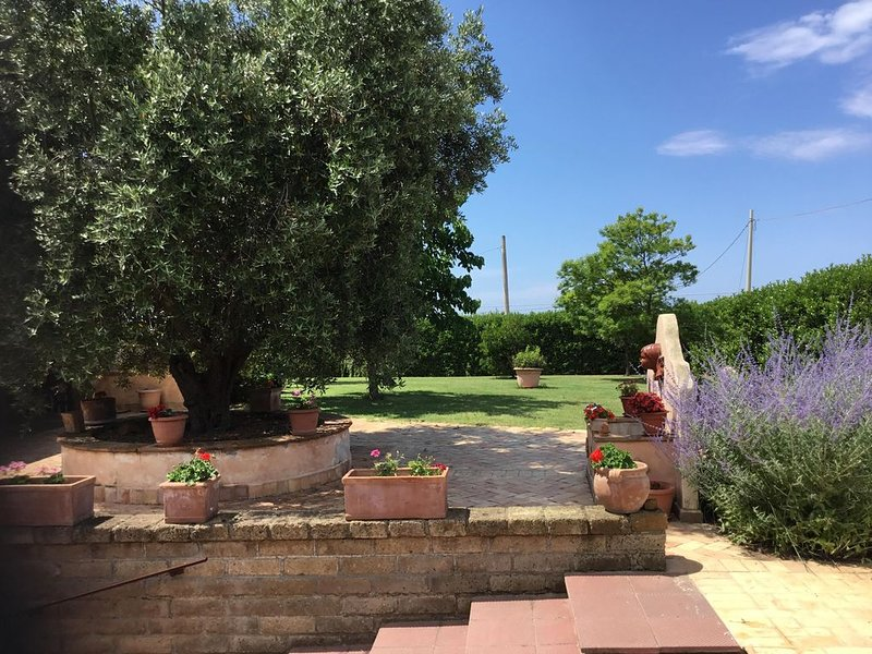 Casa Rosavera Cerveteri, holiday rental in Cerveteri