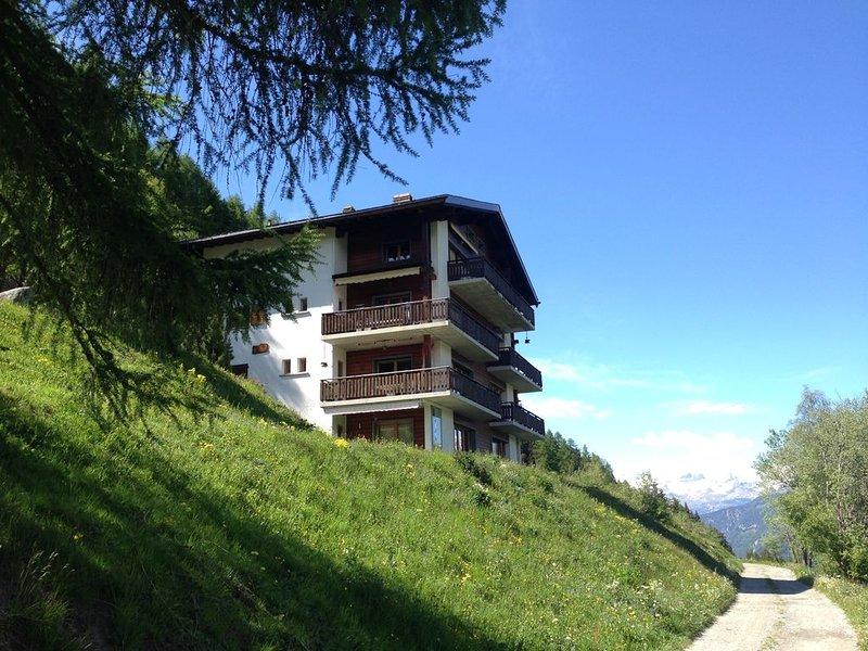 Petit appartement cosy 4-5 pers  avec vue magnifique à 280° sur les montagnes, holiday rental in Grimentz