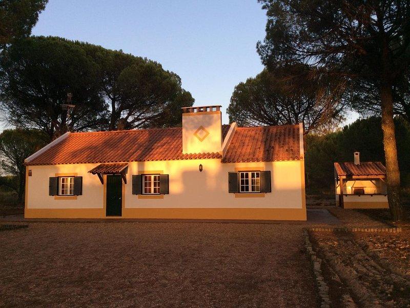 Desfrute da beleza do Alentejo. Casa inserida em pinhal e perto das belas praias, holiday rental in Figueira dos Cavaleiros