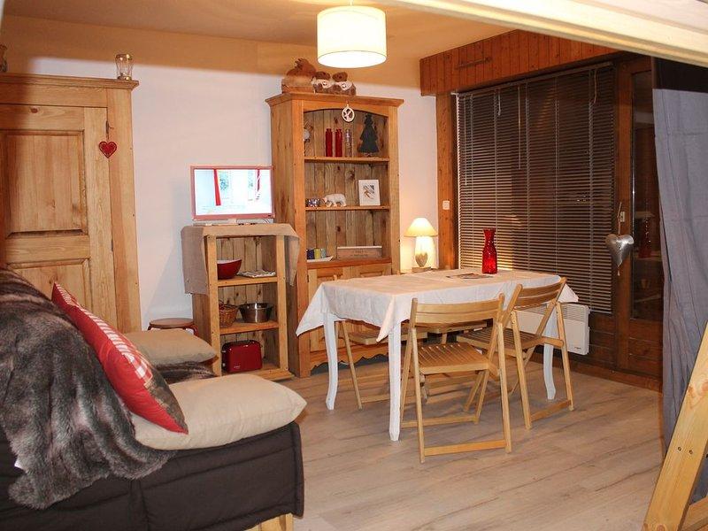 Appartt*** skis au pied, à 50 m télécabine et rassemblements cours de ski, casa vacanza a Araches-la-Frasse