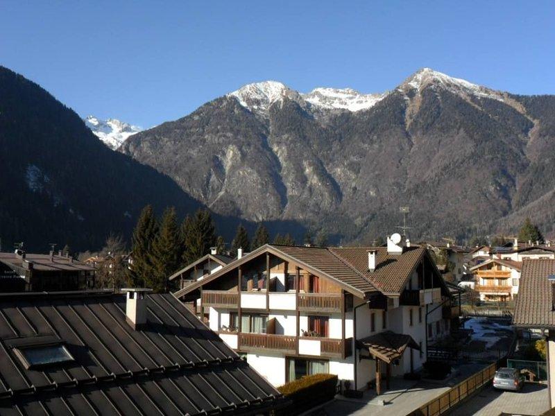 AMPIO APPARTAMENTO CONFERTEVOLE - PINZOLO, vakantiewoning in Carisolo