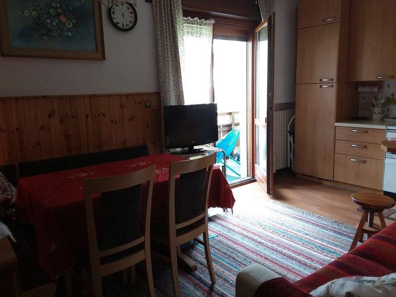 Comodo appartamento in centro a Cortina, posto auto incluso, alquiler de vacaciones en Misurina