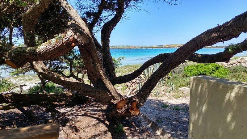 Ampia casa sulla spiaggia., holiday rental in Putzu Idu