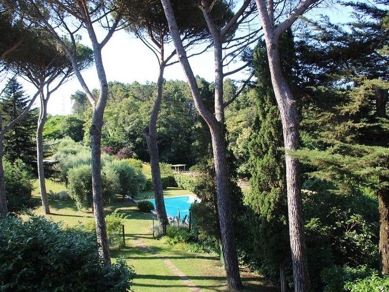 Colline di Lucca - Bilocale Ai Pini, location de vacances à Vecchiano