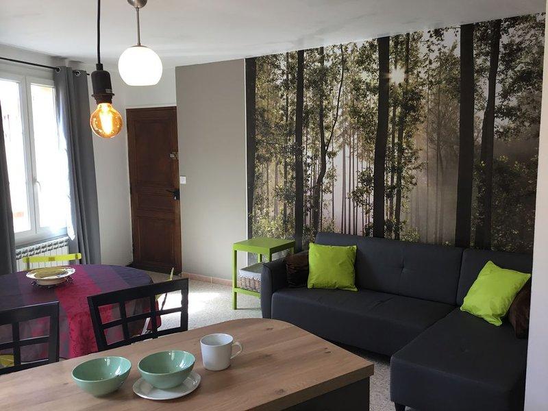 Charmant appartement 'lou roucas', vacation rental in La Palud sur Verdon