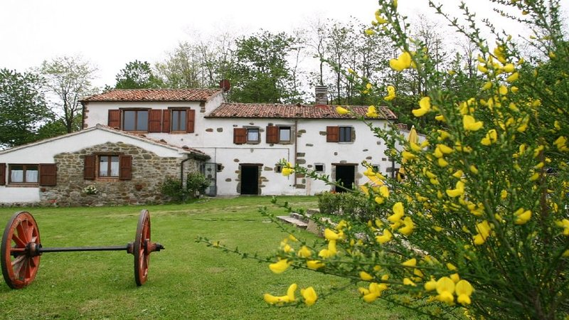 The farmhouse is surrounded by a beautiful natural lawn.