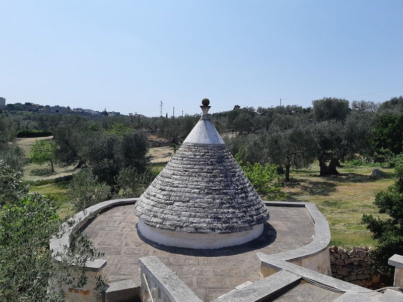 Casa Trullo Chiara -  Relax tra gli ulivi a due passi da Cisternino, holiday rental in Cisternino