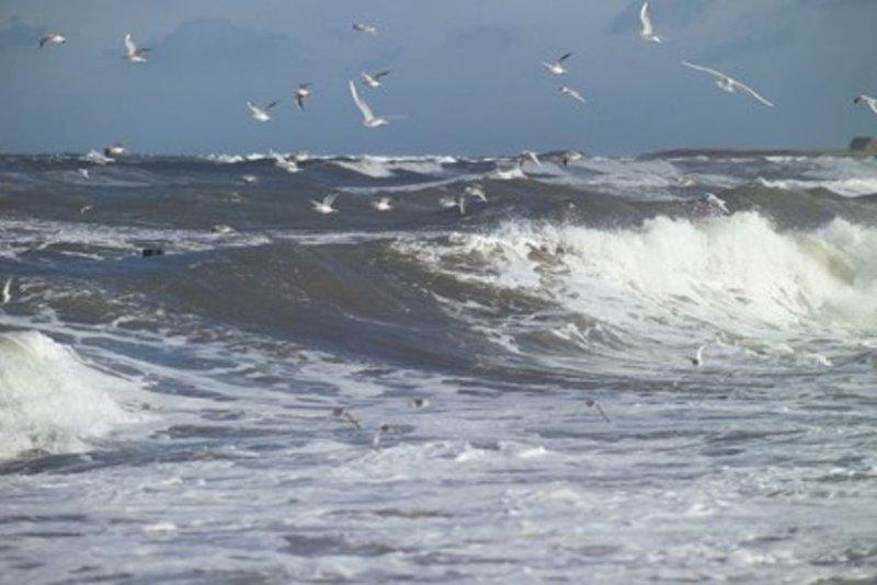 vue sur la mer!