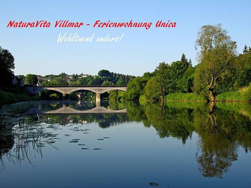 Wohlfühlen & Verlieben! Komfort-Fewo Unica im romantischen Lahntal in Villmar, vacation rental in Villmar