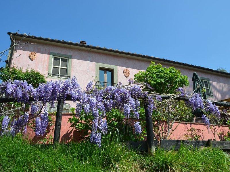 Bezauberndes Landhaus in ruhiger Lage mit fantastischer Aussicht und Pool, holiday rental in Lanciole