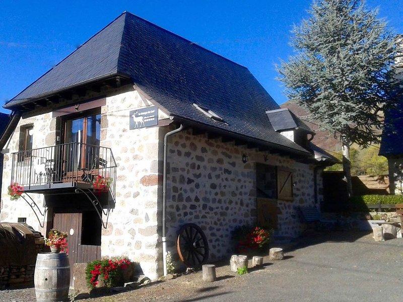 Gîte de charme à Mandailles, hameau de Liadouze,  pour 4 personnes., aluguéis de temporada em Saint-Bonnet-de-Salers