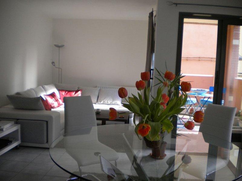 Appartement T4 meublé avec garage et terrasse centre historique de Perpignan, alquiler de vacaciones en Cabestany