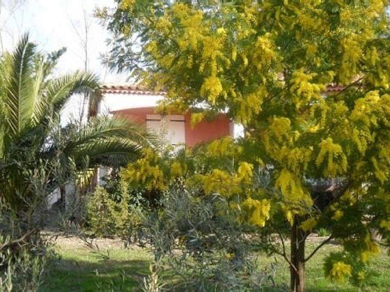 Cadre magnifique, propice au calme, dans un hameau en Camargue, vacation rental in Arles