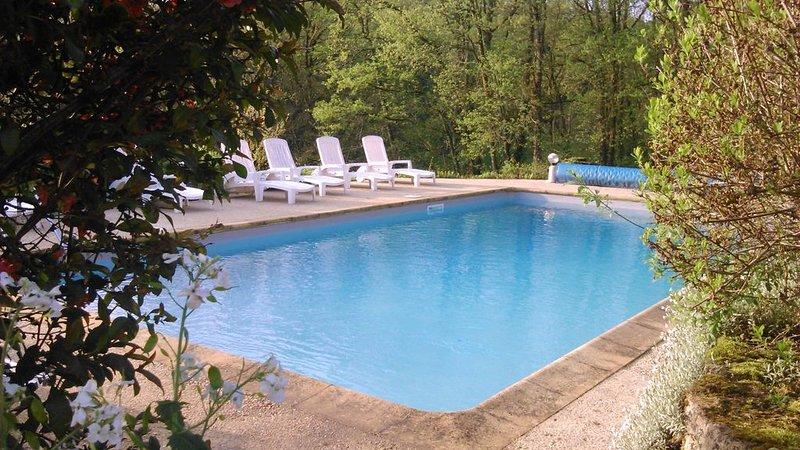 Chalet pour 4  personnes, avec piscine en pleine nature, location de vacances à Tamnies