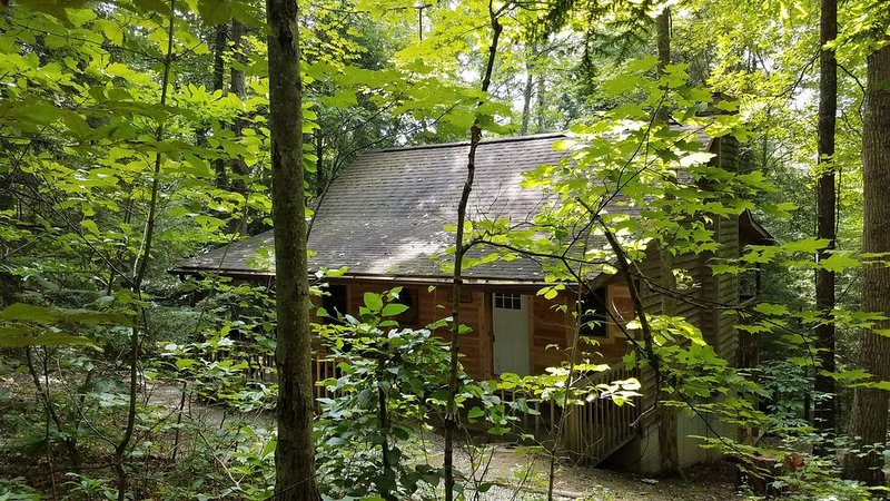 Wyandot Cabin- Secluded cabin in the heart of Hocking Hills, holiday rental in Rockbridge