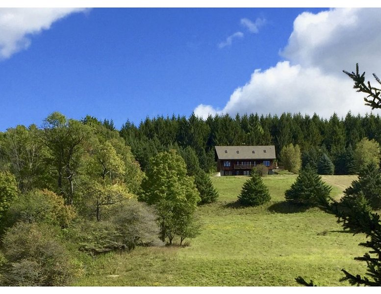 Zelený Les: house in a secluded 100 acre wood with meadows, pond, and brook, location de vacances à Bloomville