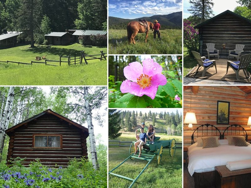 A True Montana Lodging Experience!, holiday rental in Helena