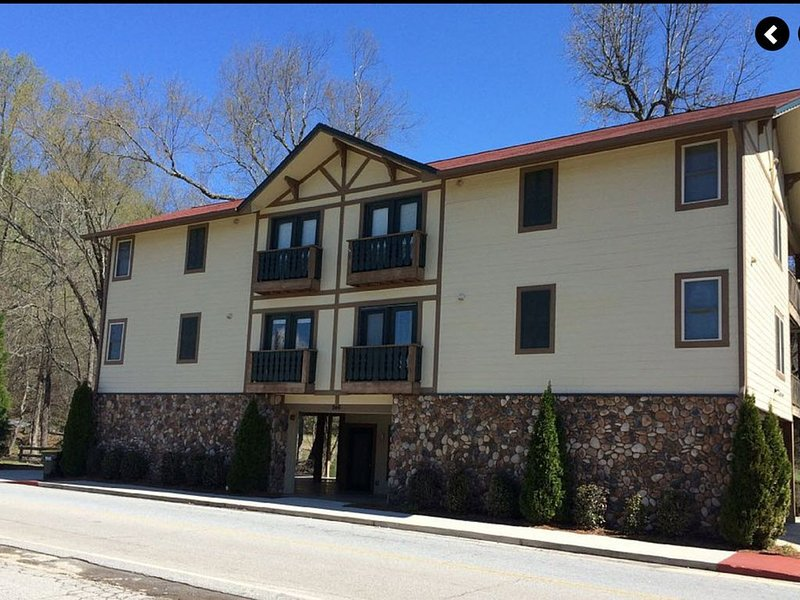 Downtown & on the River, Luxury 1-Bedroom Condo, holiday rental in Helen