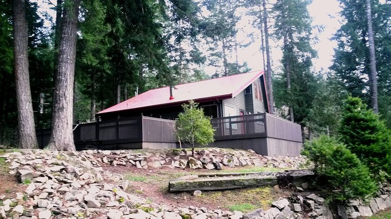 Mountain View * Borders National Forest * Sleeps 9 * H.T. * WIFI, holiday rental in Packwood