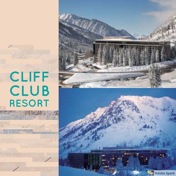 Snowbird Cliff Club Luxury Ski-in Condo Pinnacle Feb 14 - Feb 28, 2020, holiday rental in Alta