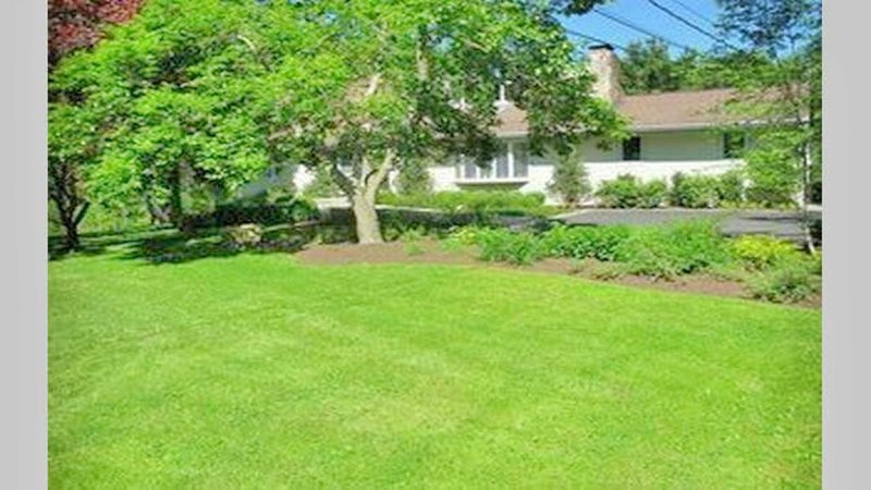 Front yard with long driveway and ample free parking.
