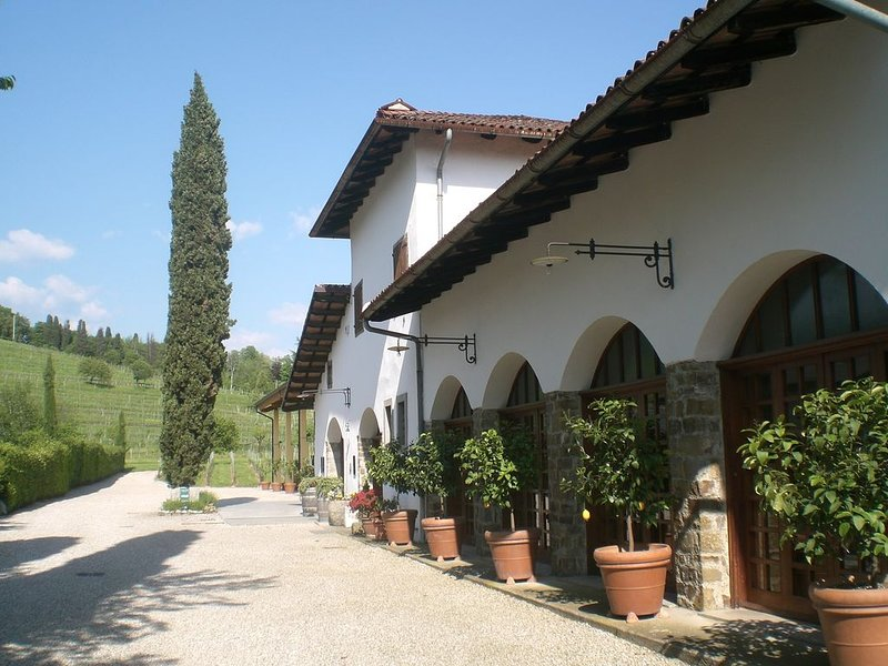 wonderful area in the middle of the vineyards where you can relax and taste wine, vacation rental in Tissano