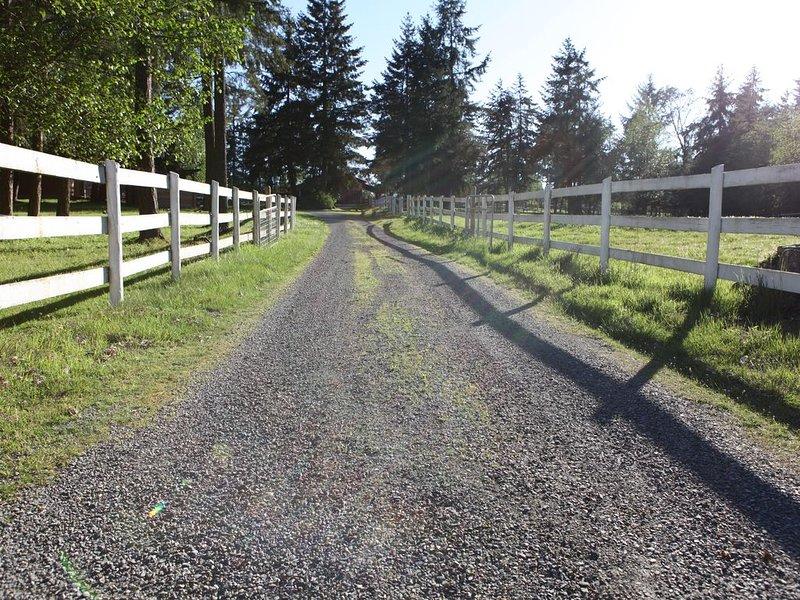Desirable location, quiet, 5 acres, large 2 bedroom + den suite, sleeps 6, holiday rental in Lantzville
