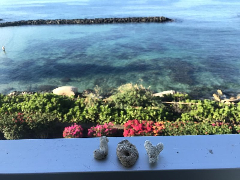 Oh the views! Oceanfront condo: Dolphins, Turtles & Sunsets oh my!, alquiler de vacaciones en Waianae