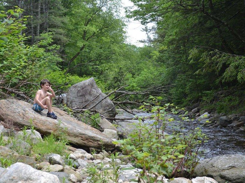 Disfruta del sonido y la belleza de Wardsboro Creek
