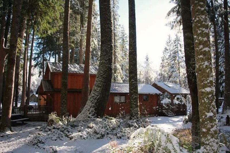 Wood heat in winter & cooled with AC in the summer.  Close to Mt. Rainier., holiday rental in Elbe